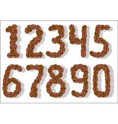 coffee bean numbers vector image vector image