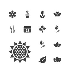 13 floral icons vector