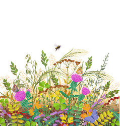 Autumn meadow plants and insects vector