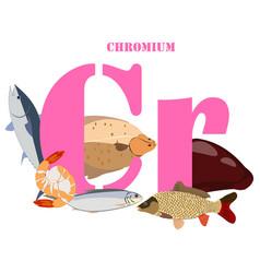 Chromium healthy nutrient rich food vector