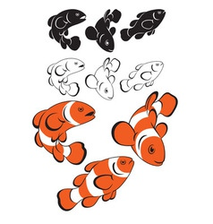 Clown fish vector
