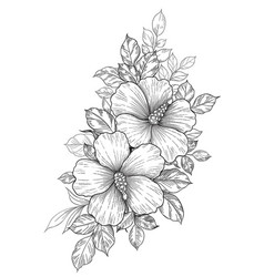 Hand drawn floral bunch with hibiscus and leaves vector