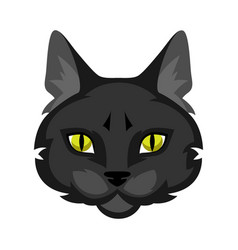 icon cat head vector image