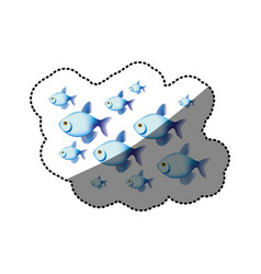 sticker colorful set collection fish aquatic vector image