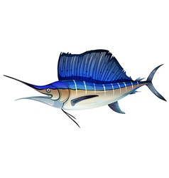 Swordfish with blue fin vector