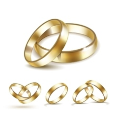 Set of Gold Wedding Rings Isolated vector image