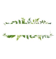 card design with green fern leaves elegant vector image vector image