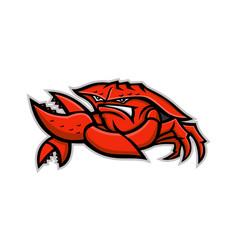 Angry red king crab mascot vector