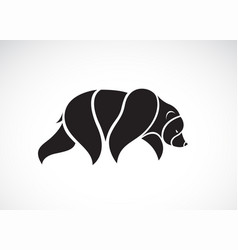 bear design on white background wild animals vector image