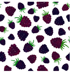 blueberry background painted pattern vector image