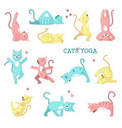 cats doing yoga poses vector image