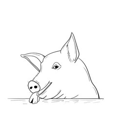chinese new year pig 2019 a pig sketch vector image