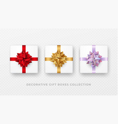 decorative white gift box with bow and ribbon vector image