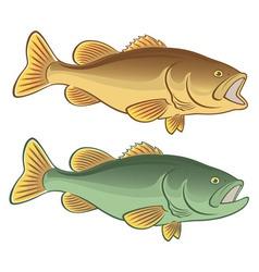 Fish bass vector