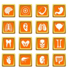 Human organs icons set orange vector