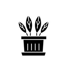 indoor plant black icon sign on isolated vector image