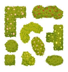 Set images garden bushes vector
