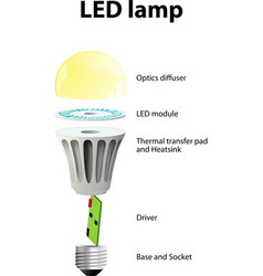 Parts of a modern led lamp vector