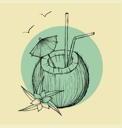 exotic coconut cocktail sketch vector image