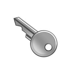 key metal vector image vector image