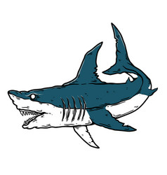angry shark design element for poster card banner vector image