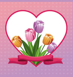 Beautiful heart with tulip flowers ribbon vector