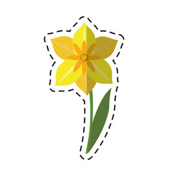 Cartoon narcissus flower spring season vector