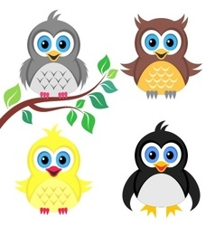 Colorful baby birds vector