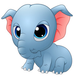 cute baby elephant sitting vector image