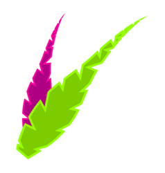 pair of feathers icon vector image