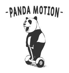 Panda motion vector