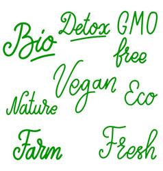Set vegan food lettering phrases design vector