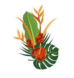 Tropical bouquet elegant floral vector