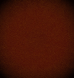 Leather background vector image