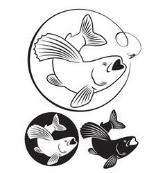 fish grayling vector image vector image