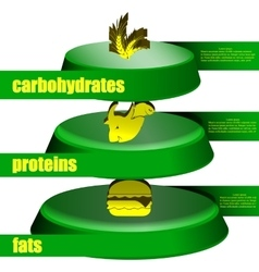 food pyramid fats protein carbohydrates vector image