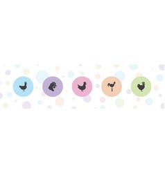 5 cockerel icons vector