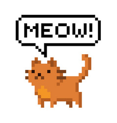 cute red kitten domestic pet pixel saying meow vector image