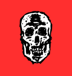 grim skull vector image