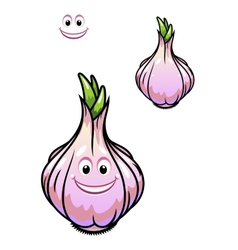 Sprouting fresh garlic bulb vector image