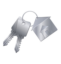 shiny metal keys with silver trinket from dream vector image
