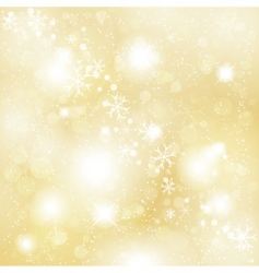 snowflakes and stars vector image