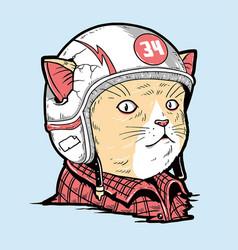Cat racer helmet vector