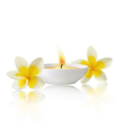 Flower candle vector