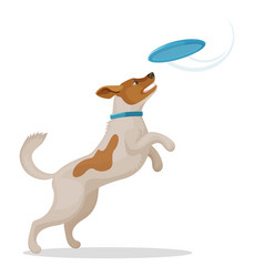 jumping dog is catching a blue frisbee disc vector image