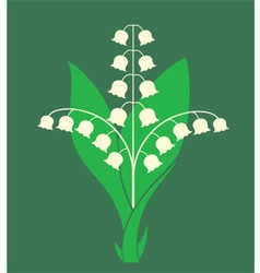 Lily of the valley vector