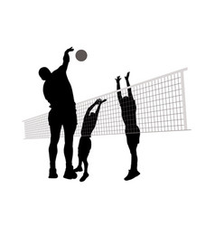 men playing volleyball vector image