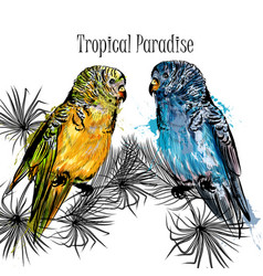 With parrots and tropical palm leafs vector
