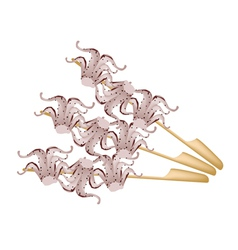 Yakitori Tako or Japanese Grilled Squid on Skewer vector image