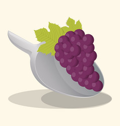 grape vegan food fresh vector image vector image